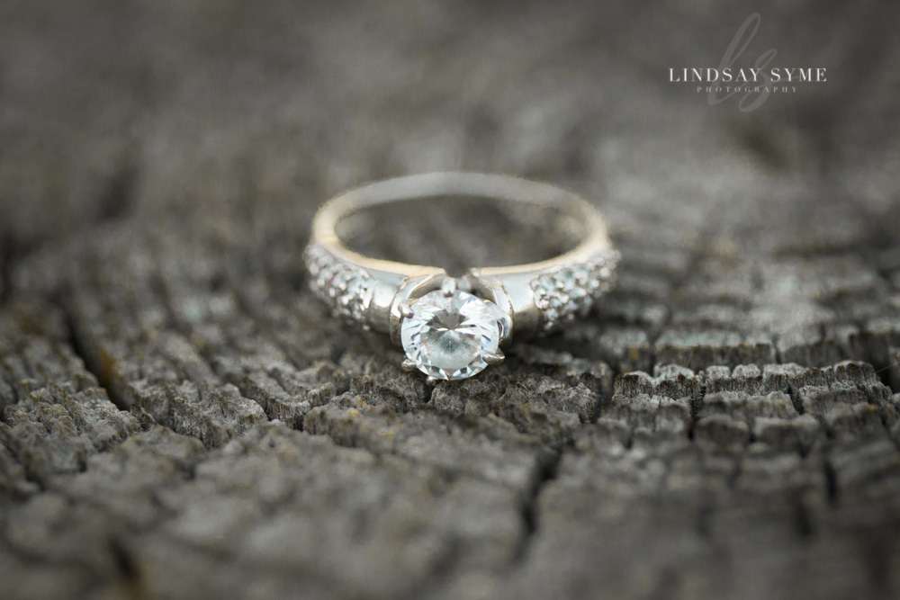 Amanda and Thomas are Getting Married - Lindsay Syme Photography